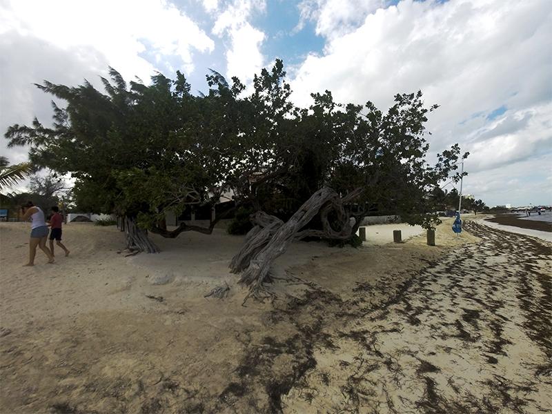Пляжи Канкуна, пляж Лас Перлас
