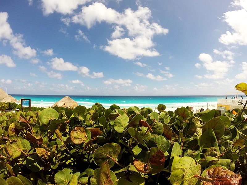 Канкун. Пляж Дельфинес
