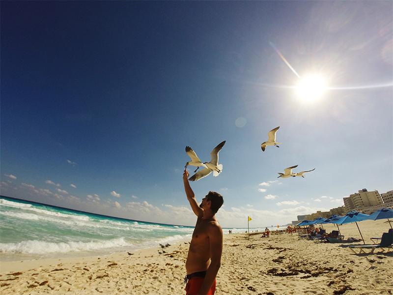 Канкун. Кормлю чаек на пляже Марлин